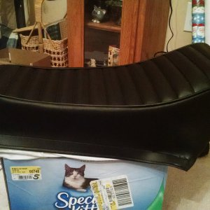 speedway_seat_cover_for_chad